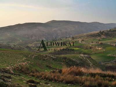 Residential Land for Sale in Naour, Amman - Photo