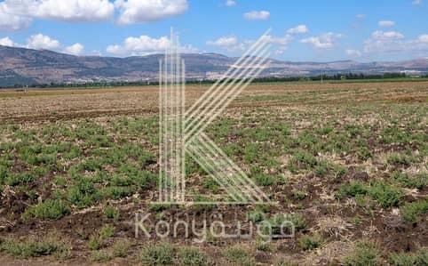 ارض استخدام متعدد  للبيع في حجار النوابلسة، عمان - Photo