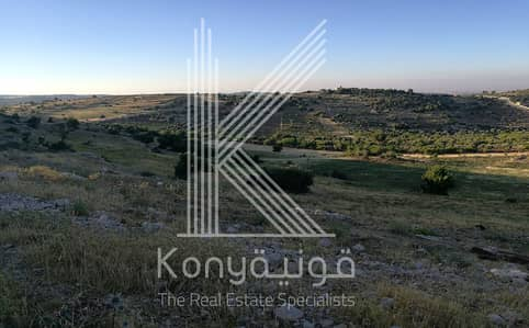 Residential Land for Sale in Umm Qais, Irbid - Photo