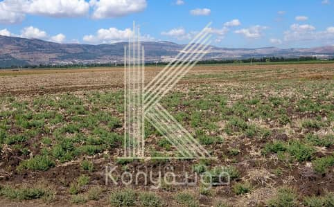 Agriculture Plot for Sale in Madaba - Photo