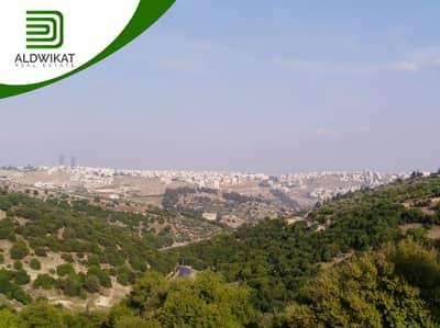 ارض سكنية  للبيع في بدر الجديدة، عمان - ارض مميزة للبيع في اجمل مناطق بدر الجديدة بمساحة 500 م