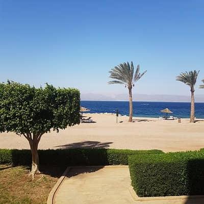 فلیٹ 3 غرف نوم للايجار في العقبة - Photo