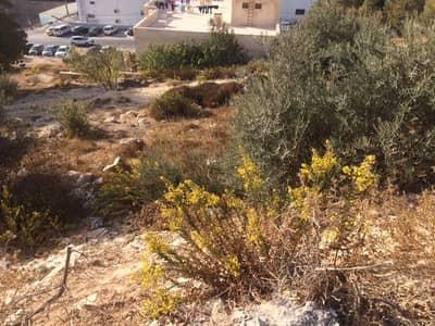 ارض سكنية  للبيع في خلدا، عمان - Photo