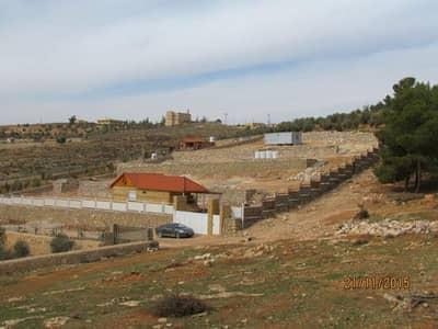 Farm for Sale in Ajloun - Photo