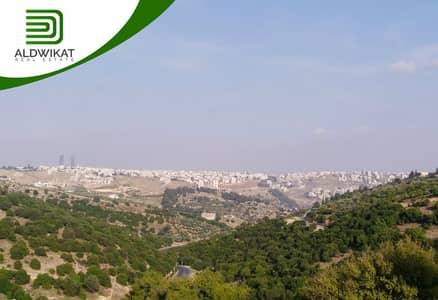 ارض زراعية  للبيع في بدر الجديدة، عمان - ارض للبيع في بدر الجديدة بمساحة 4 دونم