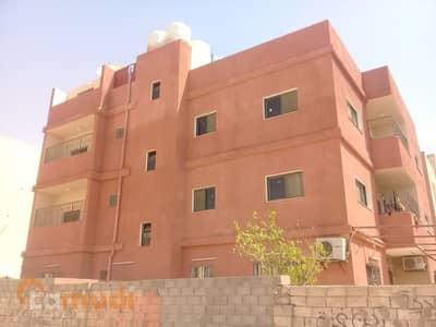 فلیٹ 3 غرفة نوم للايجار في العقبة - Photo