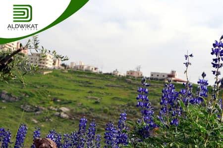 Residential Land for Sale in Fuheis, Al Salt - ارض مميزة للبيع في الفحيص (ام القش) , مساحة الارض 1000 م