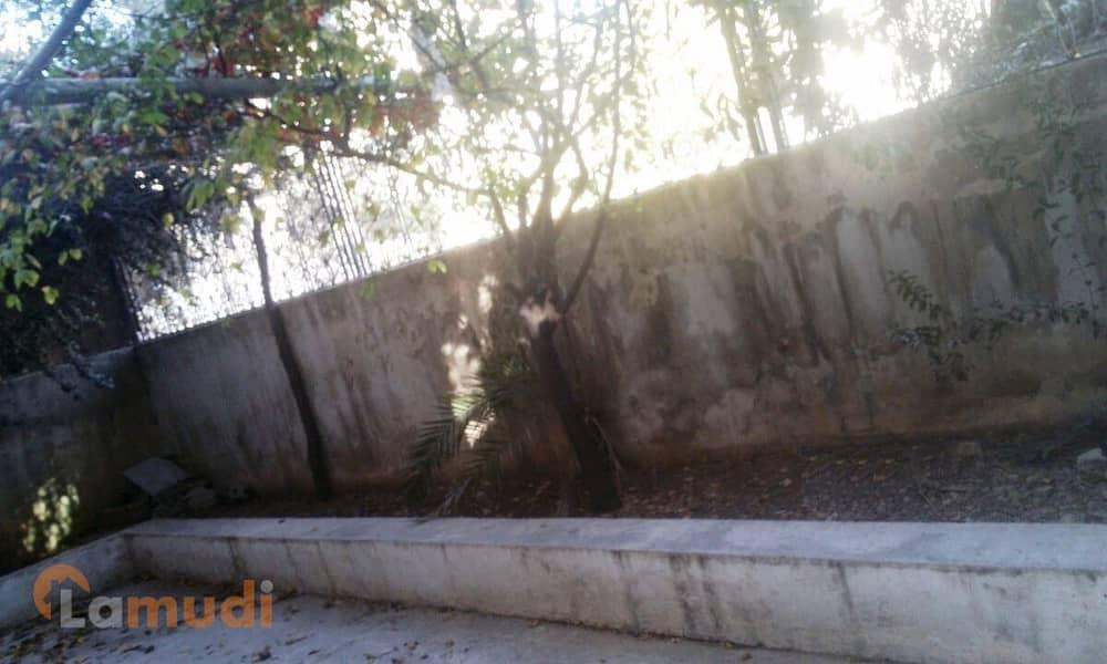 5 Photo