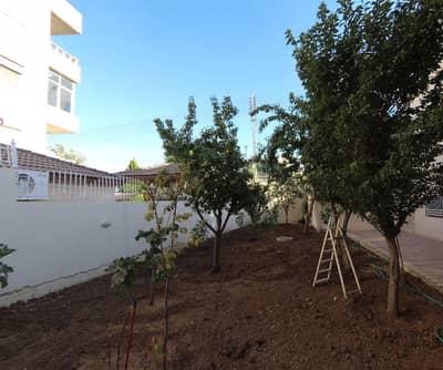 فیلا 5 غرف نوم للايجار في الرابية، عمان - فيلا مفروشه للإيجار 5 غرف نوم في الرابيه