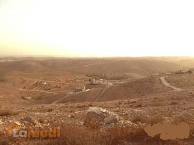 ارض سكنية  للبيع في الزرقاء - Image 4