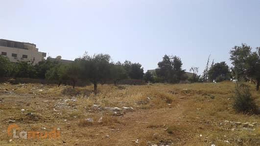 ارض سكنية  للبيع في مرج الحمام، عمان - Image 0
