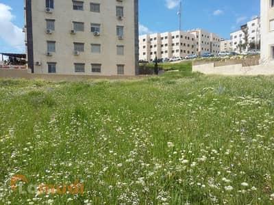 ارض سكنية  للبيع في شفا بدران، عمان - Image 6
