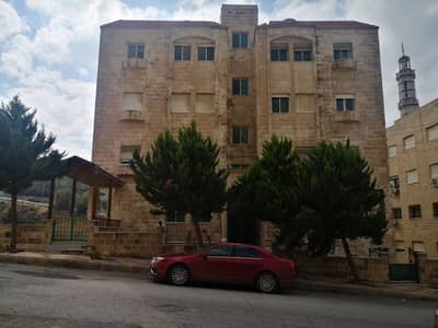 3 Bedroom Flat for Sale in Khalda, Amman - Semi-Ground Apartment for Sale in Arqoub - Khalda | 183 SQM