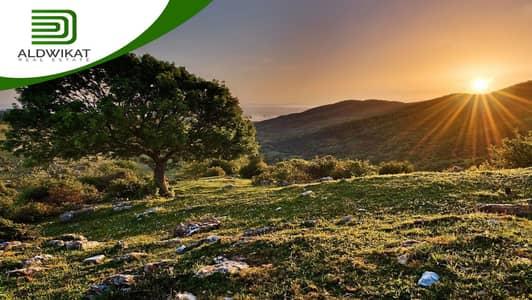 ارض زراعية  للبيع في ام العمد، عمان - ارض للبيع في جنوب عمان ام العمد | 5600 م2