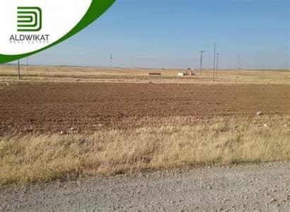 ارض زراعية  للبيع في القسطل، عمان - ارض زراعية للبيع في القسطل | 10500 م2