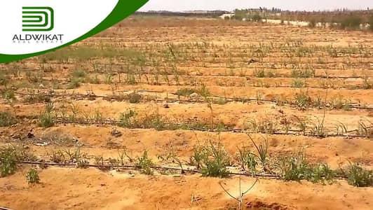 ارض زراعية  للبيع في شارع المطار، عمان - ارض زراعية للبيع على طريق المطار | 3500 م2