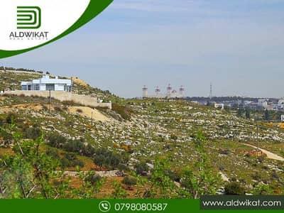 ارض سكنية  للبيع في دابوق، عمان - ارض مميزة للبيع في دابوق مساحة الارض 1075 م2