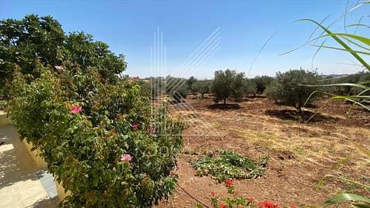 Farm for Sale in Madaba - Distinguished farm for sale Madaba – Al Faisalieh