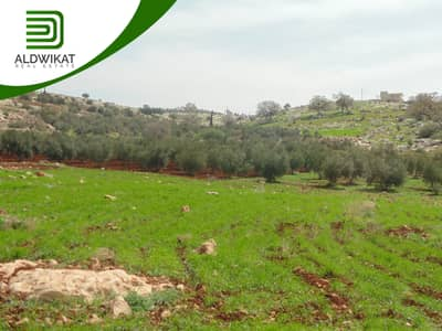 Residential Land for Sale in Bader Al Jadidah, Amman - أرض للبيع في بدر الجديدة المساحة 750 م