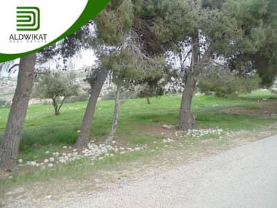 ارض سكنية  للبيع في شفا بدران، عمان - ارض للبيع في شفا بدران مساحة الارض 755 م