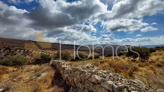 Commercial Land for Sale in Bader Al Jadidah, Amman - ارض استثمارية باجمل اطلالات للبيع في عمان - بدر بمساحة 7150 م