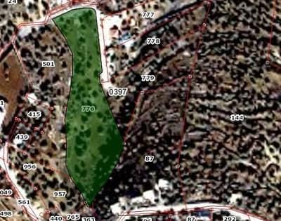 مزرعة 10 دونمات للبيع في ام جوزة حوض البلد - السلط
