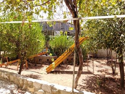 مزرعة  للبيع في غور الصافي، الكرك - Photo