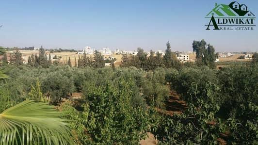مزرعة  للبيع في شارع المطار، عمان - Photo