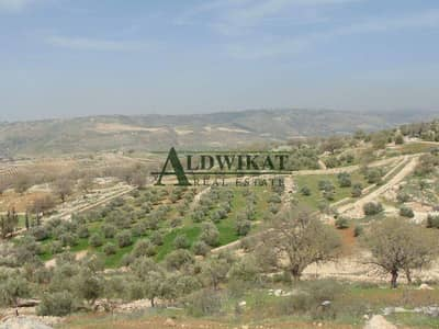Residential Land for Sale in Madaba - Photo