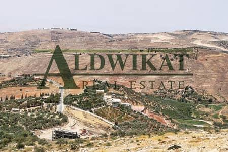 Residential Land for Sale in Yajouz, Amman - Photo
