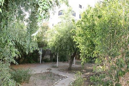 8 Bedroom Villa for Rent in Khalda, Amman - Photo