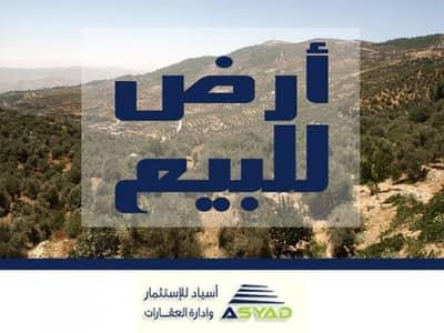 ارض استخدام متعدد  للبيع في أبو نصير، عمان - Photo
