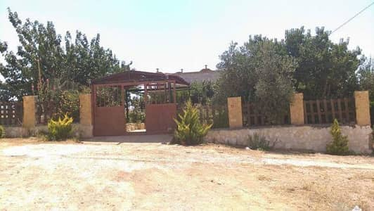 3 Bedroom Farm for Sale in Mafraq - Photo
