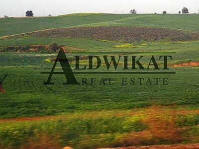 ارض استخدام متعدد  للبيع في بدر الجديدة، عمان - Photo